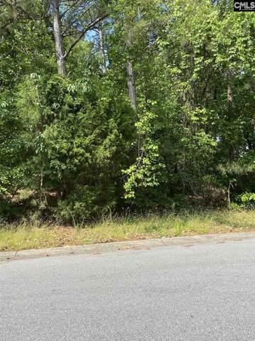 100 Wild Cherry Road, Columbia, SC 29223 (MLS #518021) :: Metro Realty Group