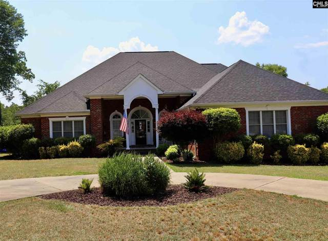 300 Forty Love Point, Chapin, SC 29036 (MLS #518221) :: Metro Realty Group