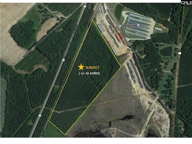 Lot 16 Hibernia Road, Monetta, SC 29105 (MLS #518250) :: Resource Realty Group