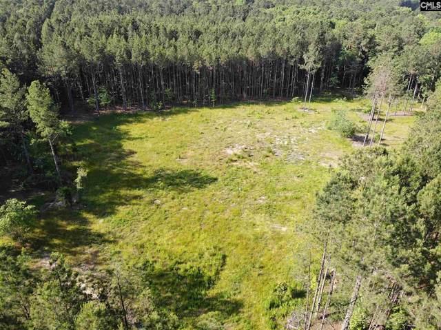 78 Sawney Creek Circle, Ridgeway, SC 29130 (MLS #518377) :: Yip Premier Real Estate LLC