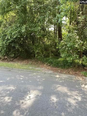 210 Wild Cherry Road, Columbia, SC 29223 (MLS #518481) :: Metro Realty Group