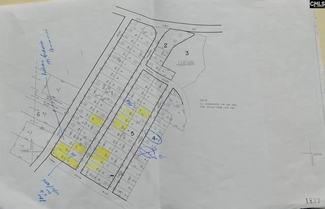 211 Acie Avenue 6-E, Hopkins, SC 29061 (MLS #518491) :: The Meade Team
