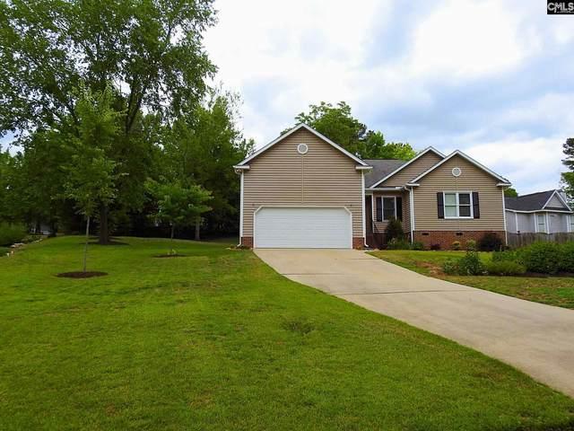 201 Tarrar Springs Road, Lexington, SC 29072 (MLS #518601) :: Home Advantage Realty, LLC