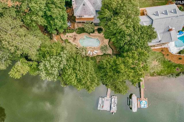 430 Highwater Court, Chapin, SC 29036 (MLS #518858) :: The Meade Team