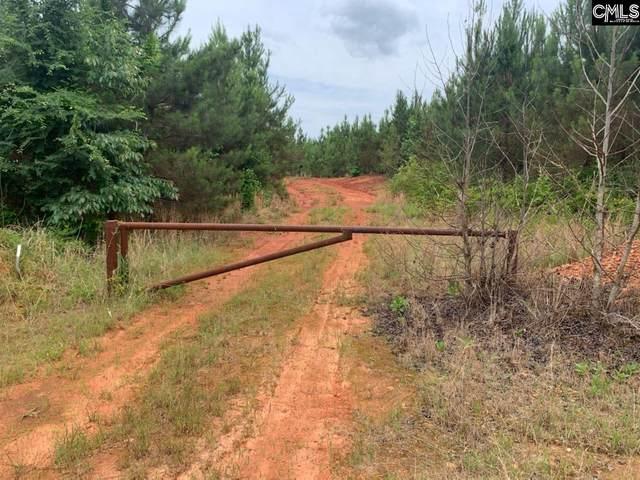 0 Pineywoods Road, Saluda, SC 29138 (MLS #518990) :: Resource Realty Group