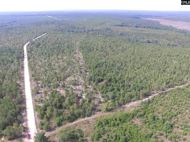 Beaver Dam Road, Cassatt, SC 29032 (MLS #519005) :: The Olivia Cooley Group at Keller Williams Realty