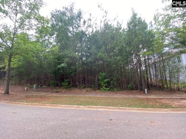341 Woodlander Drive, Blythewood, SC 29016 (MLS #519120) :: The Latimore Group