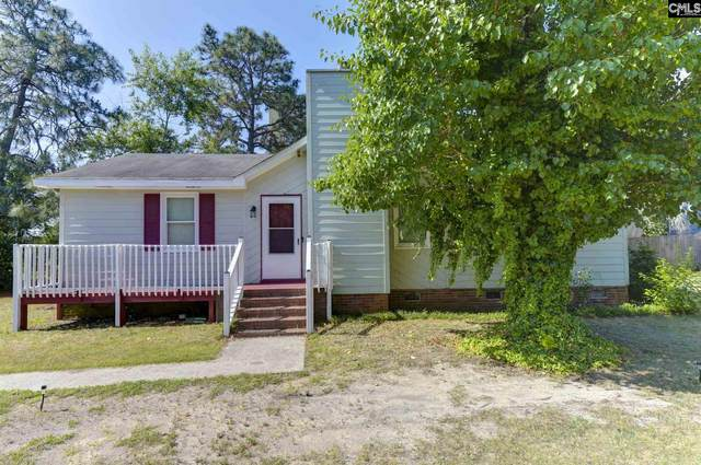 209 Old Brass Drive, Columbia, SC 29229 (MLS #519121) :: The Latimore Group