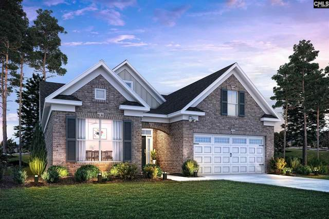 208 Mary Locke Court, Elgin, SC 29045 (MLS #519165) :: The Olivia Cooley Group at Keller Williams Realty