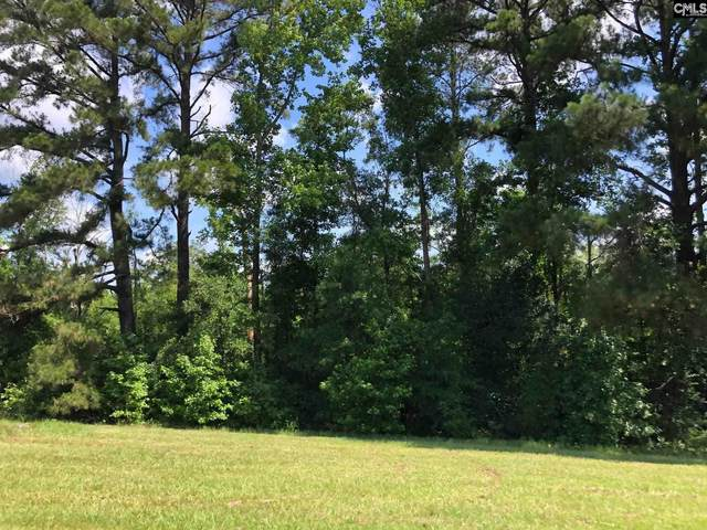 Lee State Park Road, Bishopville, SC 29010 (MLS #519216) :: Resource Realty Group