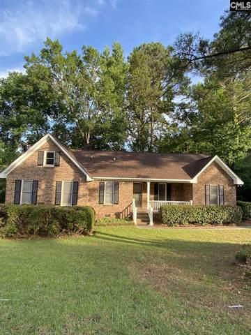 213 Saint Stephens E, Irmo, SC 29063 (MLS #519281) :: Disharoon Homes