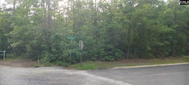 0 Wood Willow Point A, Chapin, SC 29036 (MLS #519352) :: The Olivia Cooley Group at Keller Williams Realty