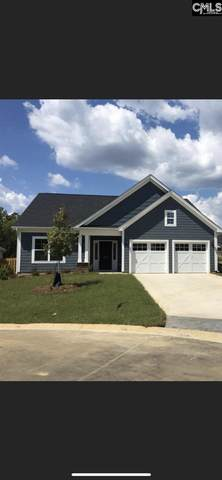 828 Summer Sands Court, Chapin, SC 29063 (MLS #519444) :: The Meade Team