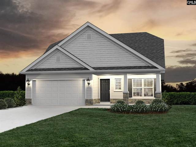 109 Summit View Court, Chapin, SC 29036 (MLS #519564) :: Resource Realty Group
