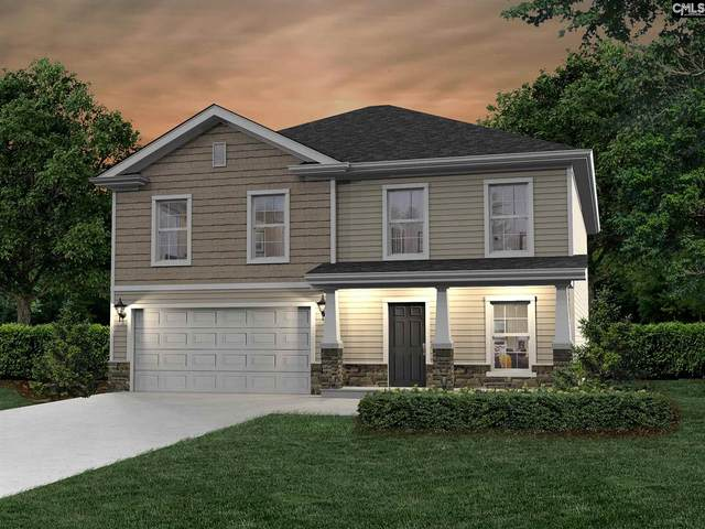 213 Quiet Cove Court, Chapin, SC 29036 (MLS #519576) :: Gaymon Realty Group