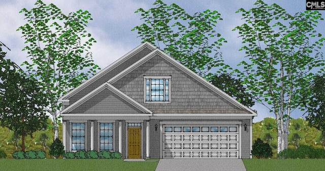810 Dutchmaster Drive, Chapin, SC 29036 (MLS #519577) :: The Meade Team