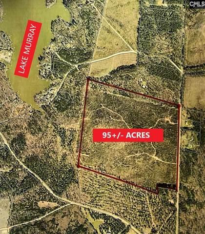 0 Wildwood Road Extension, Leesville, SC 29070 (MLS #519590) :: Resource Realty Group
