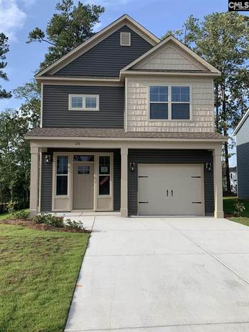 20 Apple Tree Court, Columbia, SC 29223 (MLS #519692) :: Resource Realty Group