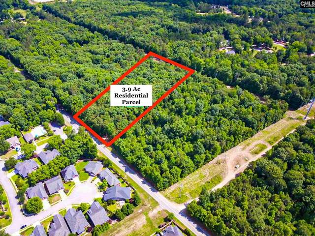 2683 Mineral Springs Road, Lexington, SC 29072 (MLS #519737) :: Home Advantage Realty, LLC