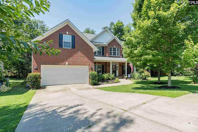 43 Wave Dancer Court, Chapin, SC 29036 (MLS #519772) :: The Meade Team