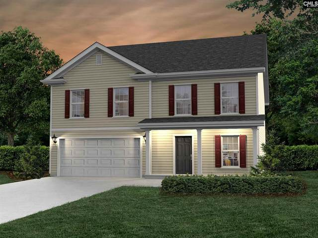 311 Pine Meadow Drive, Chapin, SC 29036 (MLS #519810) :: The Latimore Group
