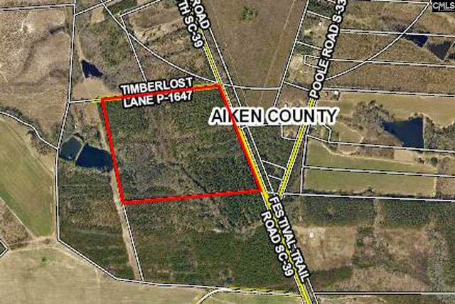 TBD Festival Trail Road B, Wagener, SC 29164 (MLS #520048) :: Yip Premier Real Estate LLC