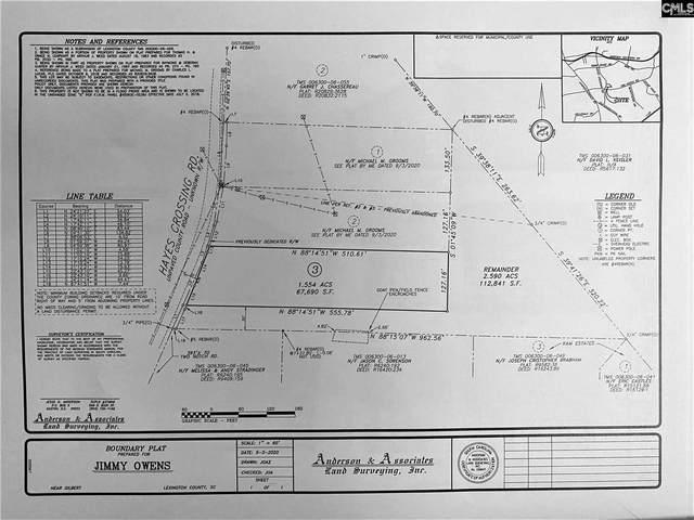 1125 Hayes Crossing Road, Gilbert, SC 29054 (MLS #520121) :: Resource Realty Group