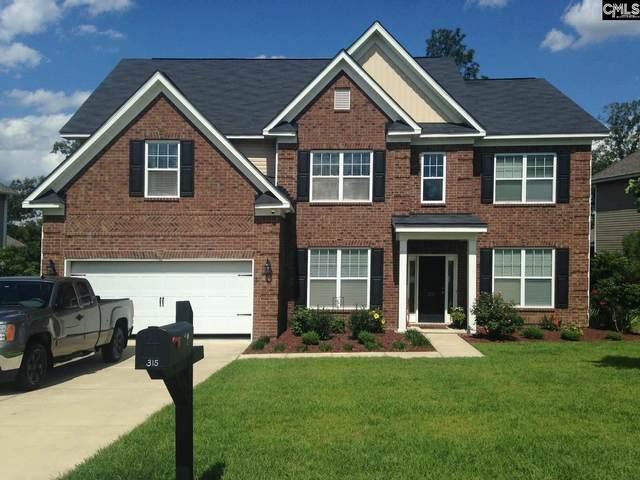 315 Magnolia Tree Drive, Lexington, SC 29073 (MLS #520261) :: EXIT Real Estate Consultants