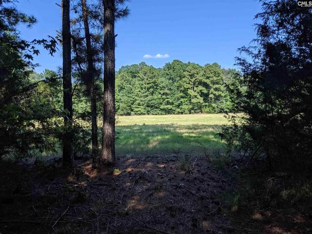 N/S Kennerly Road Parcel A, Irmo, SC 29063 (MLS #520280) :: Metro Realty Group