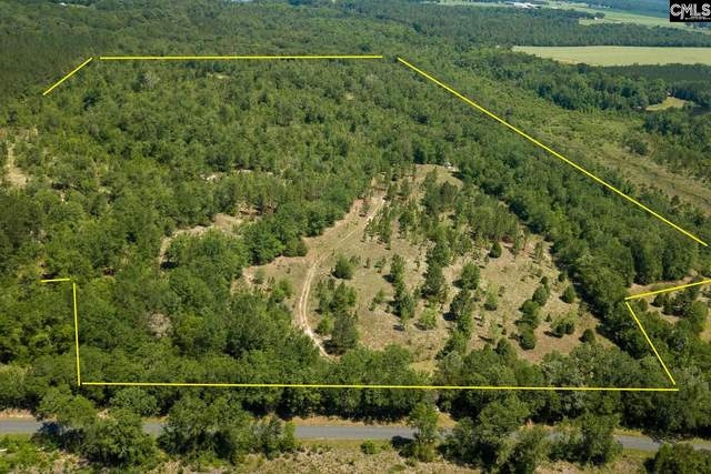 1550 Wagener Trail Road, Wagener, SC 29164 (MLS #520306) :: EXIT Real Estate Consultants