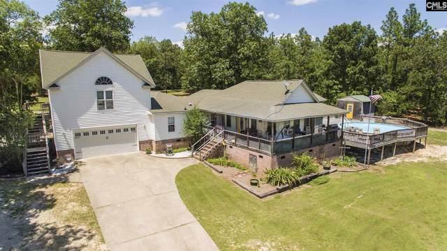 860 Tindal Road, Pelion, SC 29123 (MLS #520537) :: Home Advantage Realty, LLC
