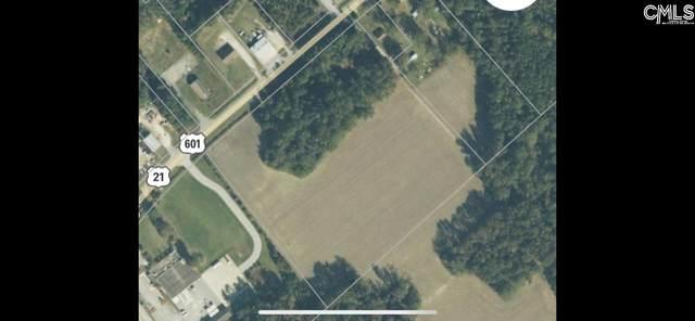 Joe Jeffords Blvd Boulevard, Orangeburg, SC 29115 (MLS #520647) :: The Olivia Cooley Group at Keller Williams Realty
