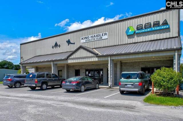 1017 Gordon Street, Camden, SC 29020 (MLS #520727) :: EXIT Real Estate Consultants