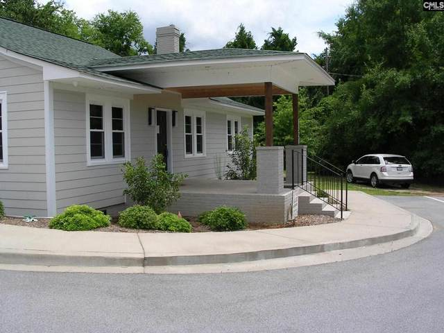 1520 N Lake Drive, Lexington, SC 29072 (MLS #520904) :: Home Advantage Realty, LLC