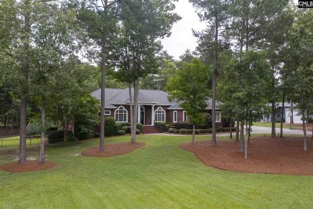 210 Tom Drafts Circle, Gilbert, SC 29054 (MLS #520906) :: EXIT Real Estate Consultants