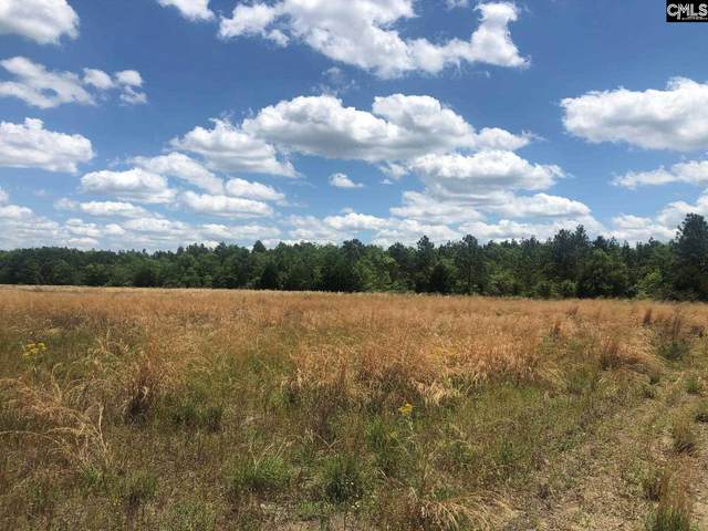 2601 Hwy 6 Highway, Gaston, SC 29053 (MLS #520923) :: The Olivia Cooley Group at Keller Williams Realty
