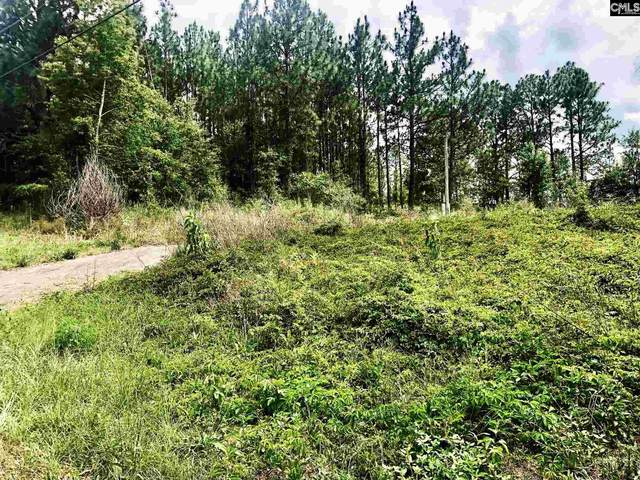 212 Forest Drive Lots 9-12, Gaston, SC 29053 (MLS #521221) :: Resource Realty Group