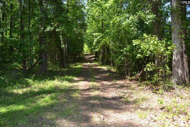 TBD Frye Road, Lexington, SC 29072 (MLS #521335) :: The Olivia Cooley Group at Keller Williams Realty