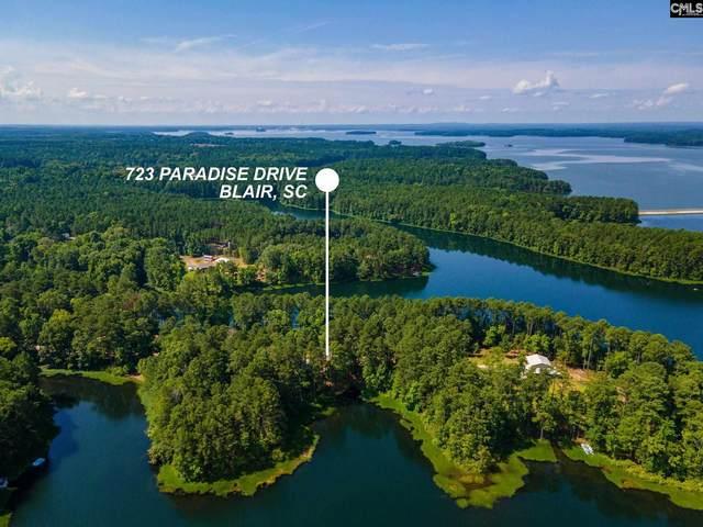723 Paradise Drive, Blair, SC 29015 (MLS #521345) :: Home Advantage Realty, LLC