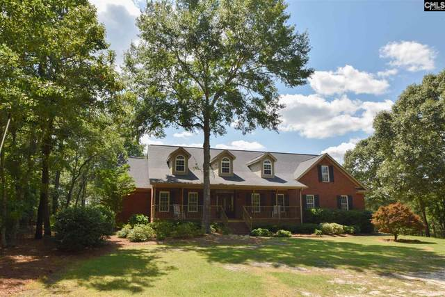 550 James Dunbar Road, Pelion, SC 29123 (MLS #521450) :: Home Advantage Realty, LLC