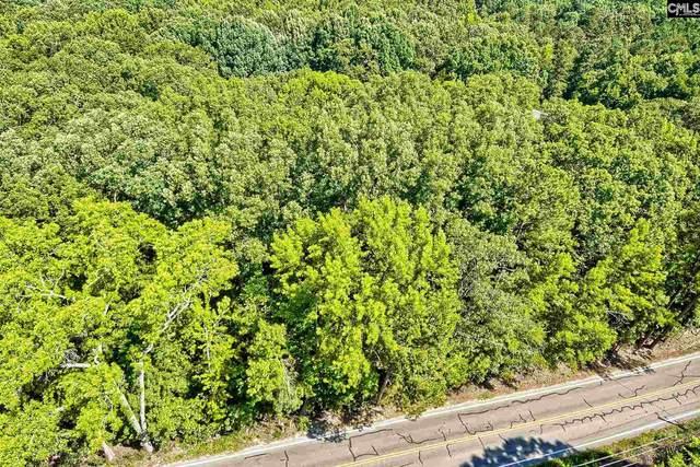 Andrew Corley Road, Lexington, SC 29072 (MLS #521660) :: EXIT Real Estate Consultants