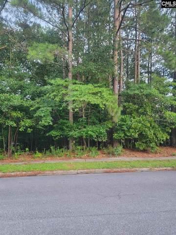107 Eagle Pointe Drive, Columbia, SC 29229 (MLS #521816) :: Loveless & Yarborough Real Estate