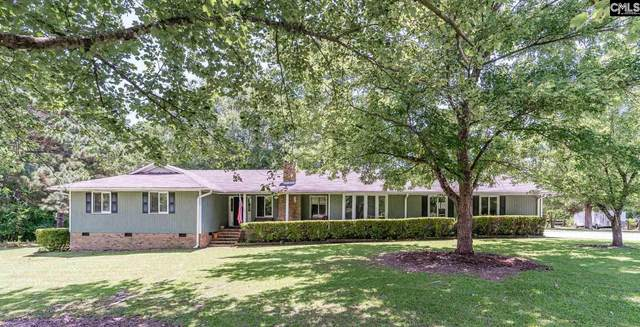 142 Eunice Court, Chapin, SC 29036 (MLS #522090) :: The Latimore Group