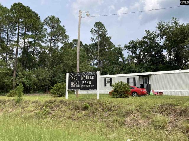 4145 Fish Hatchery Rd, Gaston, SC 29053 (MLS #522091) :: The Olivia Cooley Group at Keller Williams Realty