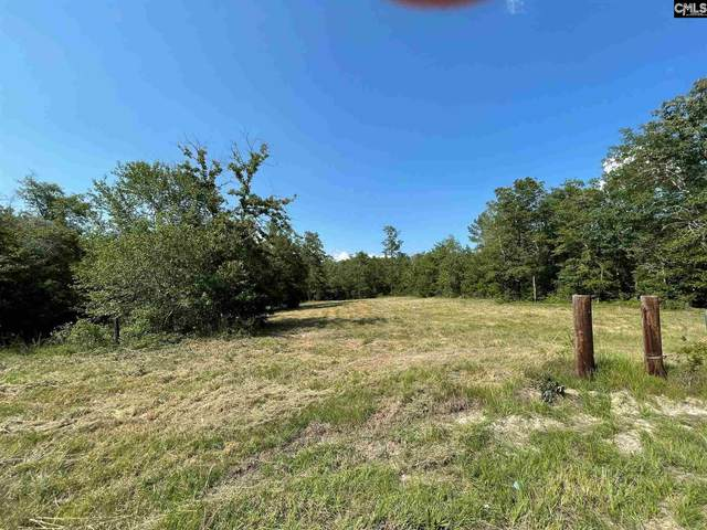 2038 Old Charleston Road, Lexington, SC 29073 (MLS #522102) :: The Olivia Cooley Group at Keller Williams Realty