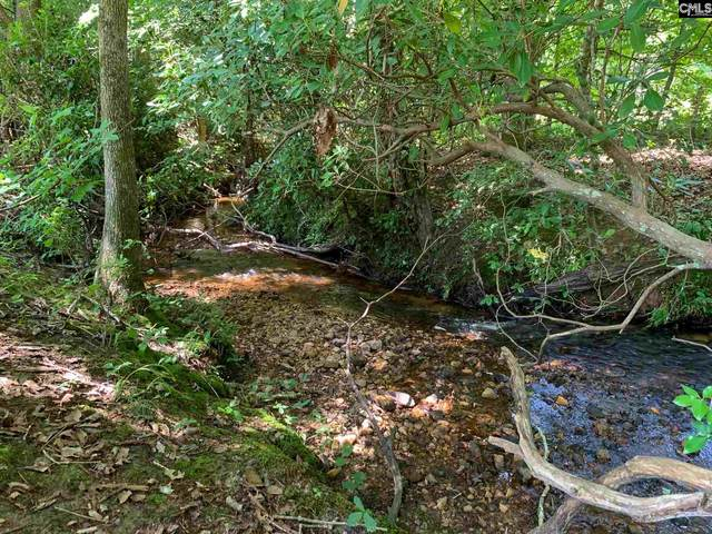 863 Longtown Rd Lot 2, Lugoff, SC 29078 (MLS #522163) :: Metro Realty Group