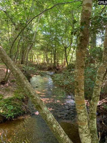 863 Longtown Rd Lot 3, Lugoff, SC 29078 (MLS #522168) :: Metro Realty Group