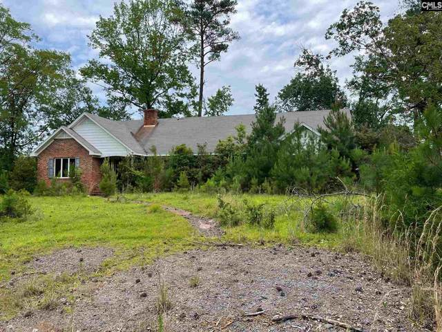 164 Summer Court, Chapin, SC 29036 (MLS #522312) :: The Olivia Cooley Group at Keller Williams Realty