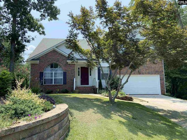 113 W Creek Court, Irmo, SC 29063 (MLS #522535) :: Resource Realty Group