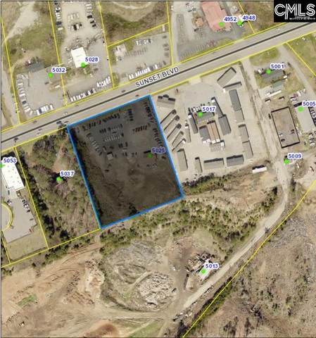 5025 Sunset Boulevard, Lexington, SC 29072 (MLS #522615) :: The Shumpert Group